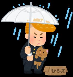 天神祭は雨の場合に花火、船渡御、屋台は中止になる?(大阪天満宮)
