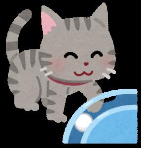 お雛様をどう守る?猫のイタズラ対策をご紹介!